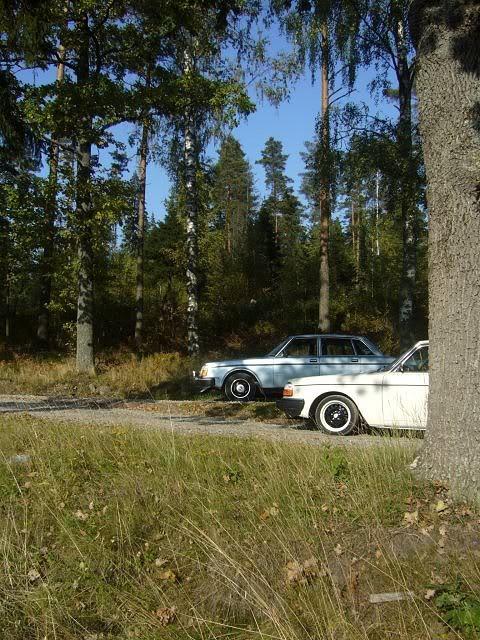 Volvo 245 California (FuncCrew) Gerk2