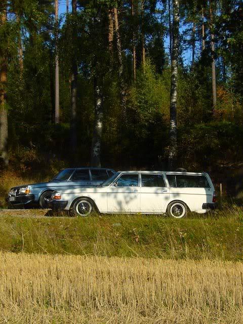 Volvo 245 California (FuncCrew) Gerk5