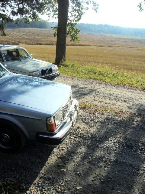 Volvo 245 California (FuncCrew) Gerk8