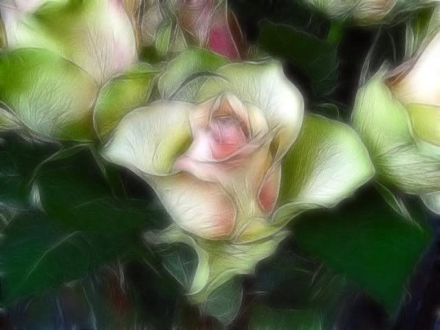 الورود أحلى ما في الوجود : بفن يشبه جماله الطبيعة حتى تكاد تشم روائحها...( صـــور )! Fl