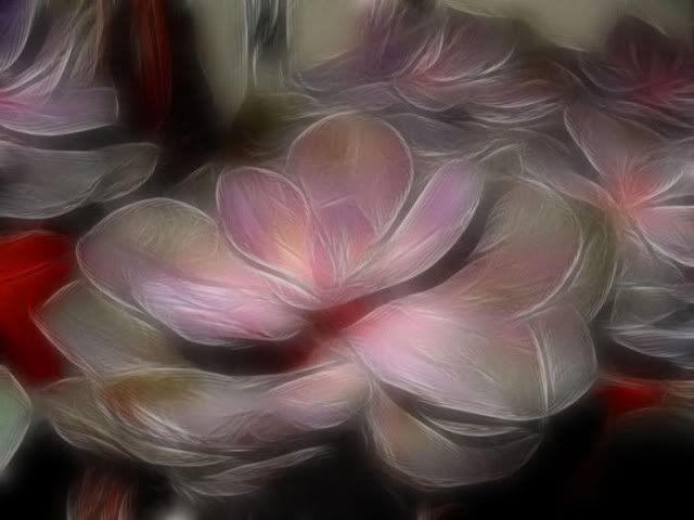 الورود أحلى ما في الوجود : بفن يشبه جماله الطبيعة حتى تكاد تشم روائحها...( صـــور )! Fl3