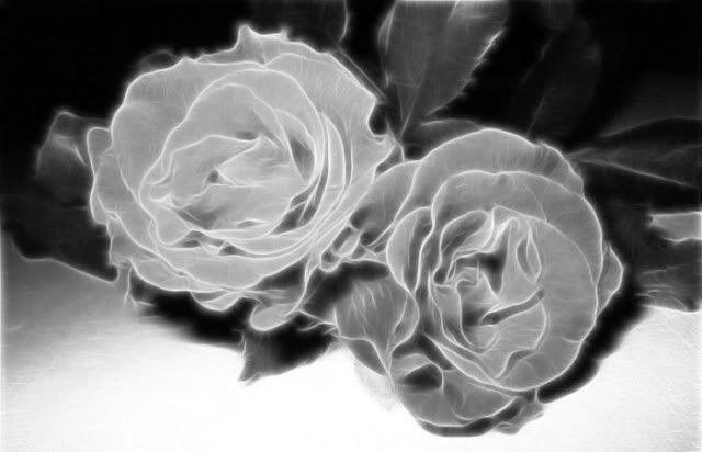 الورود أحلى ما في الوجود : بفن يشبه جماله الطبيعة حتى تكاد تشم روائحها...( صـــور )! Fl9