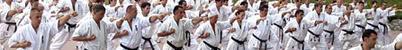 Entrenamiento, Kijon,Tecnicas ,K.O ,Combates y Katas