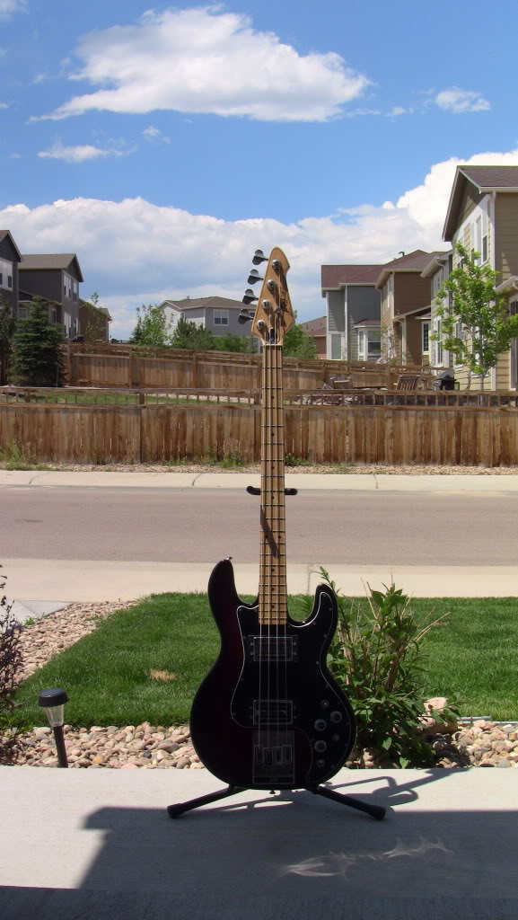 My Peavey T-40 (lots of photos) IMG_0352
