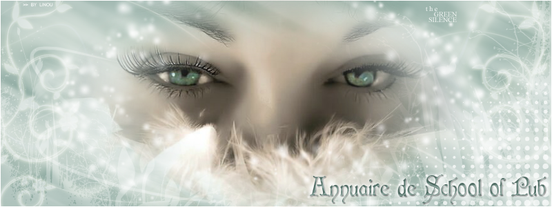 L'A-SoP, L'annuaire de SoP 11juipv