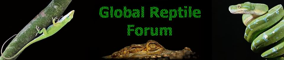 Global Reptile Forums