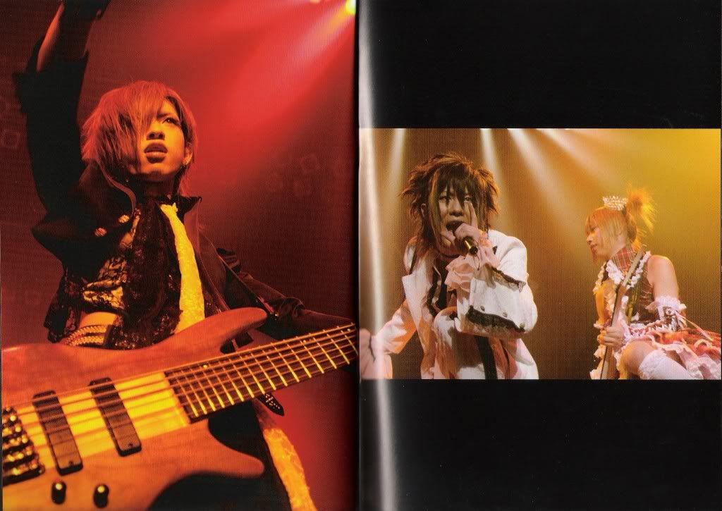 Scans CD's, DVD's MegamassoLunchBox13