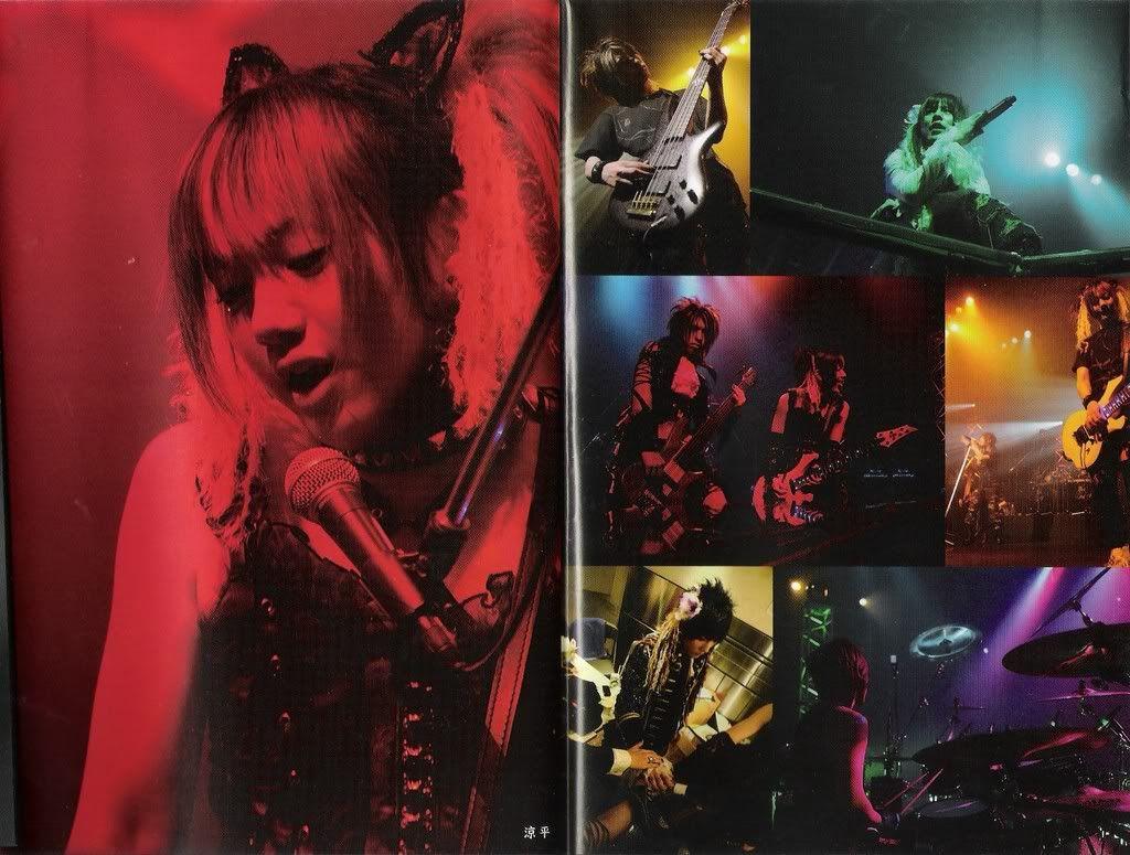 Scans CD's, DVD's Megastaro4