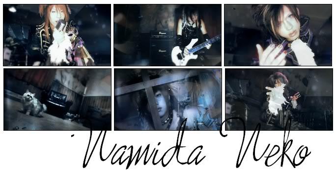 Namida Neko Namidaneko