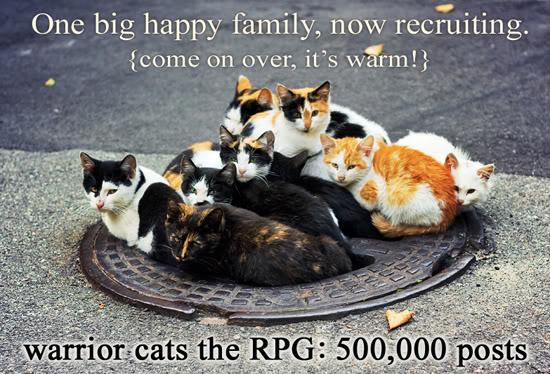 warrior cats RPG: 500,000 posts & friendly 500000_ad2_lg