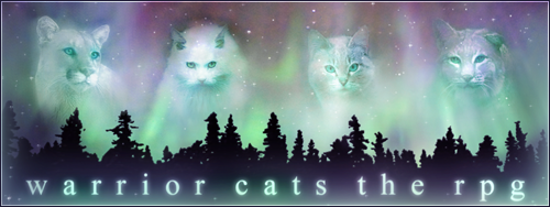 Warrior Cats RPG - Active, friendly, all levels! Warrior-cats-aurora