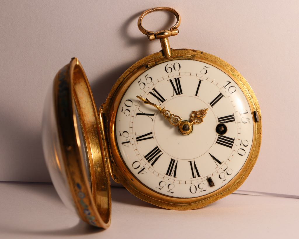 Julien Le Roy, enameled watch circa 1750 IMG_8187_zpsbackyilr