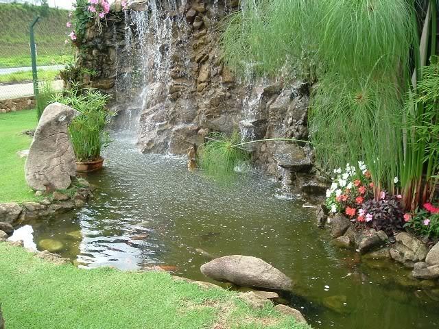 Belos lagos de jardins p gina 1 for Lagos de jardin