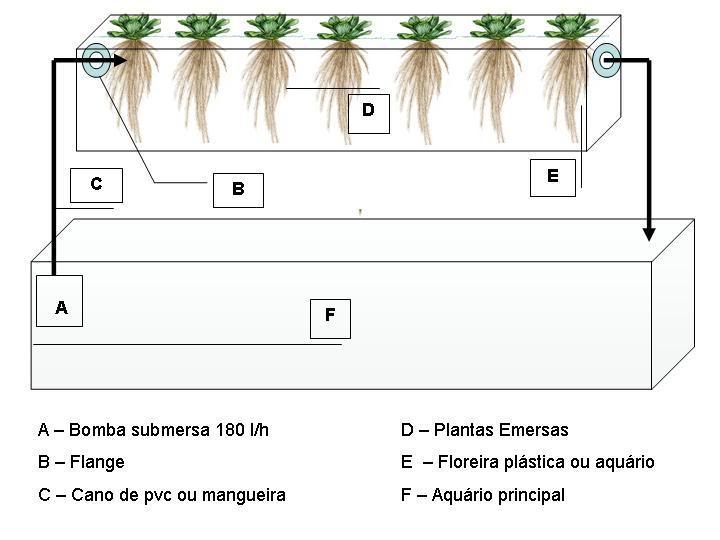 Filtro de plantas - solução barata e natural para o equilíbrio do aquário Slide1-1