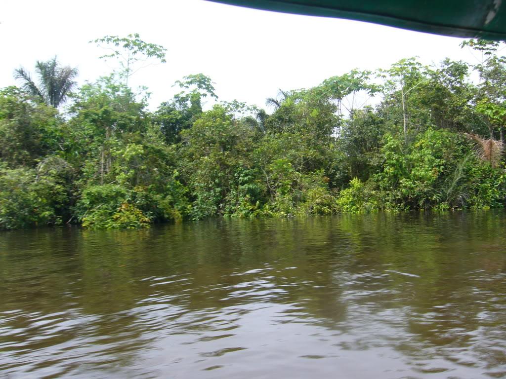 Fiche Rio Nanay Pérou Enacaminoalalbergue