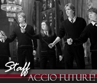 Contactar - Accio Future Accio-staff