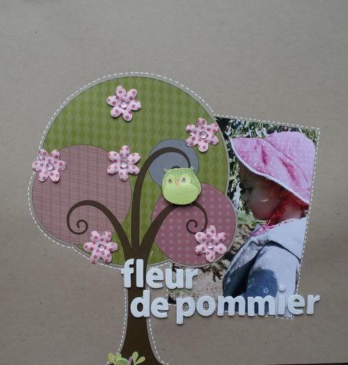 26 mars 2009- Fleur de pommier IMG_7462