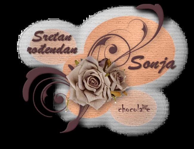 Sonja Srecan rodjendan Sonja