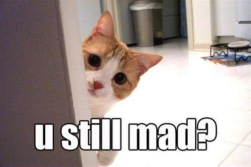 Te sakam...i sakam da ti kazam....... - Page 7 Funny-kitten-are-you-still-mad1