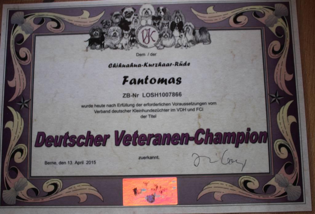 Lion, Lomasi et Fantomas champions Allemagne 2015  Fantomas%20German%20veteran%20chapion%202015_zpsenfgrjem