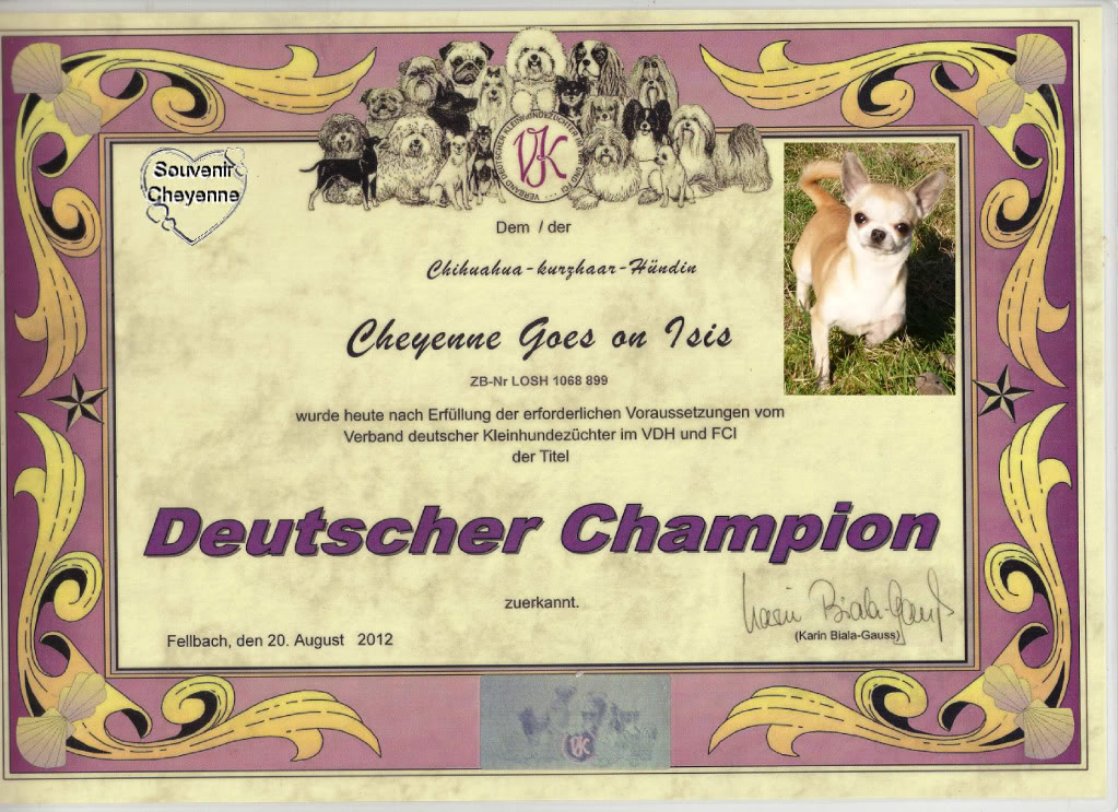 TITRES Champions   GermanCHIsismail_zps131f608f