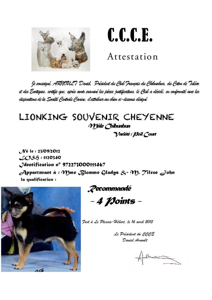 Quotations CCCE  Lion%20CCCE%204%20pts_zpszuss95c9