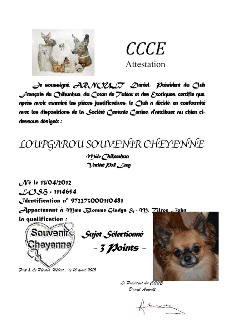 Quotations CCCE  Loup%20CCCE%203%20points_zpssq16xqae