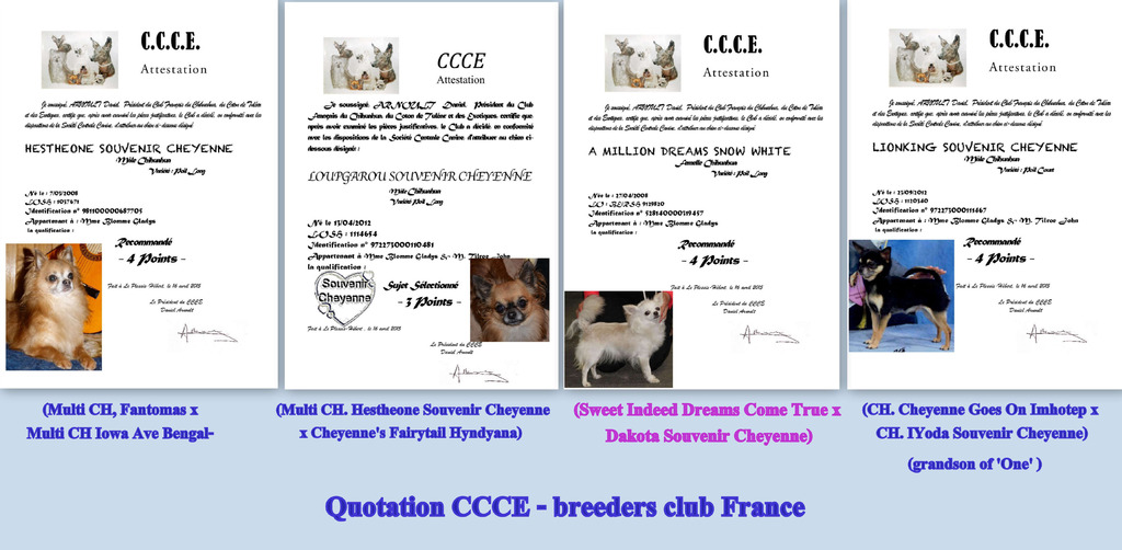 Quotations CCCE  Quotations%20CCCE%20neige%20one%20lion%20loup%202015_zpsuvdoczub