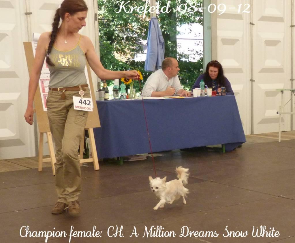 Snow White dite Neige - Page 5 P1390790