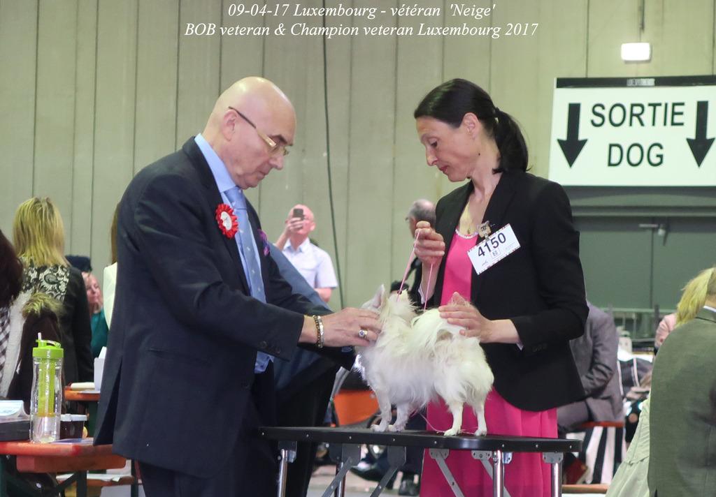 Neige Championne des Vétérans de Luxembourg  IMG_0421_zpslmmpjnnd