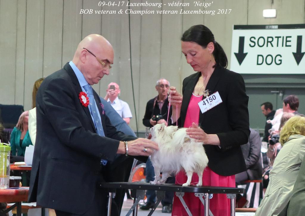 Neige Championne des Vétérans de Luxembourg  IMG_0422_zpsofuvcfnj