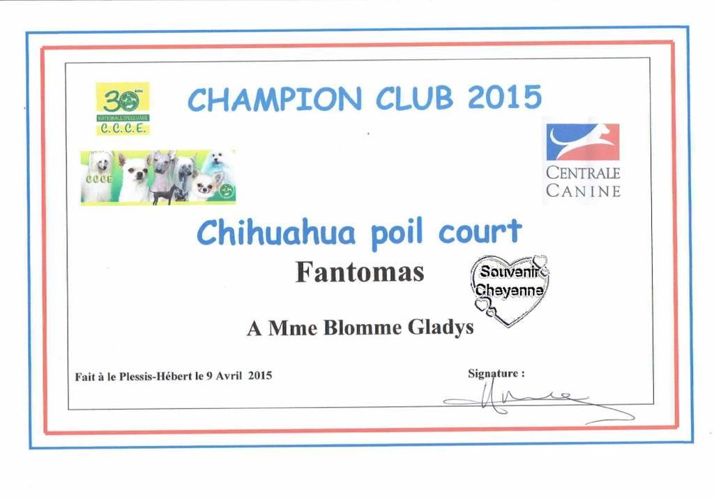 Neige et Fantomas Champions club CCCE France 2015 CCCE%20champions%202015%20Fantomas_zpsvjmq6zy5