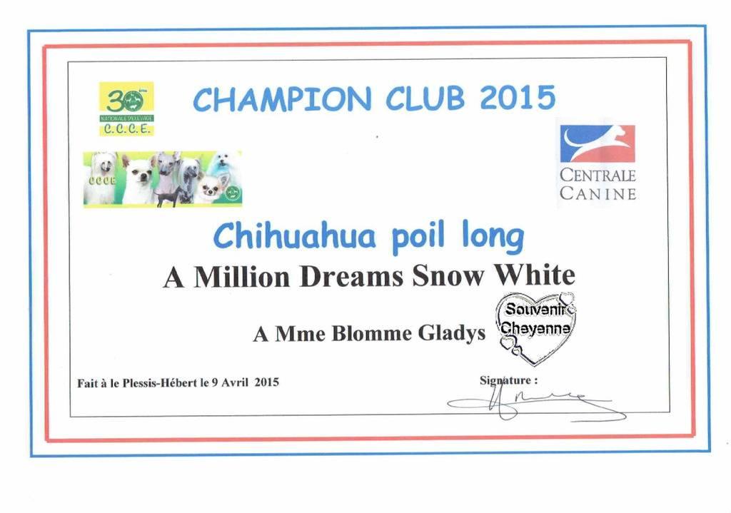 Neige et Fantomas Champions club CCCE France 2015 CCCE%20champions%202015%20Neige_zpsgfrvxwll