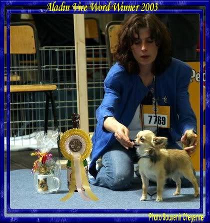 Soeurettes Bruxelle & Bienvenue  15 ans - Page 6 AladinVDH-CAC-RCACIB-ViceWW03b