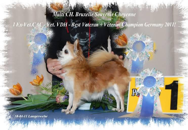 Soeurettes Bruxelle & Bienvenue  15 ans - Page 5 BXLFINLW010