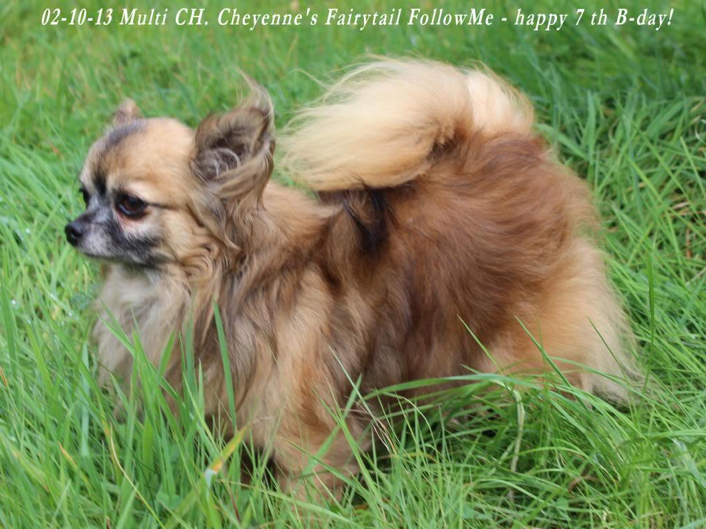 FollowMe & Feronia  - Page 3 IMG_1058_zpsb250a6e9