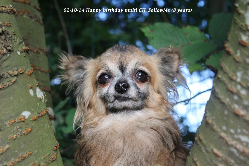 FollowMe & Feronia  - Page 4 IMG_2543_zpsf7d4378f