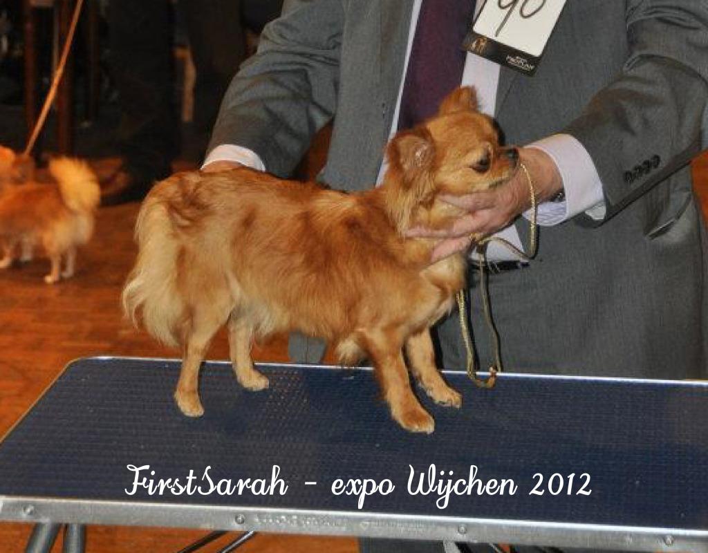 FollowMe & Feronia  - Page 2 Sarahwijchen2012c