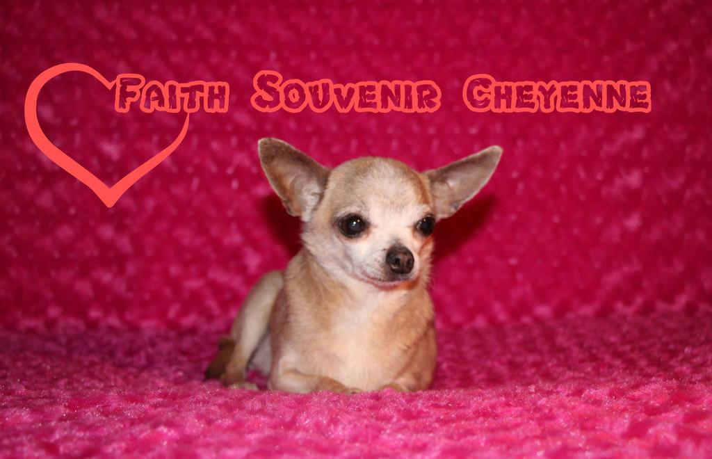 Faith & ForeverEmi   - Page 2 Faith%2010%20ans%2014-04-16_zpsvmqcnoxc