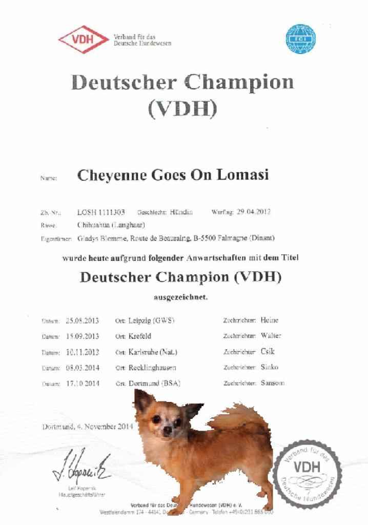 CH. Lomasi Championne VDH 2014!! LomasiVDHchampion2014POST_zpse1d60b2a