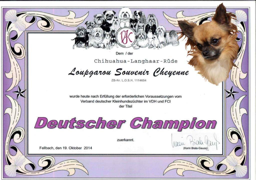 Suprise ....Loup Champion Allemagne 2014  LoupGarouGermanchampion2014_photo_zps96326d16