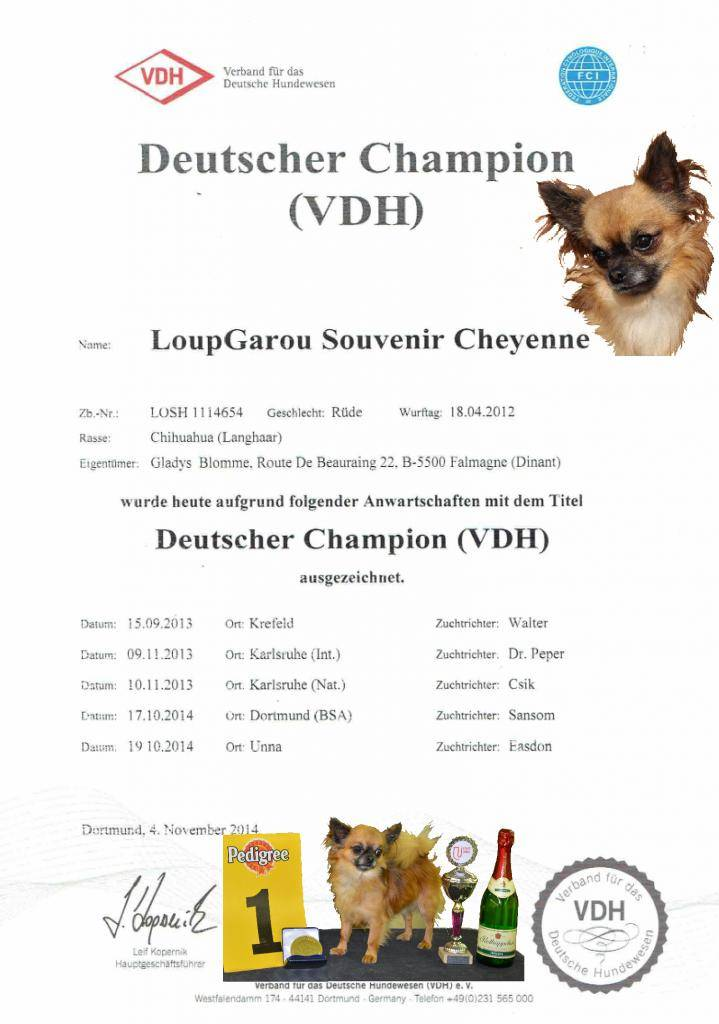 CH. LoupGarou Champion VDH Allemagne 2014 !  LoupGarouVDHchampion2014POSTb_zps09295133