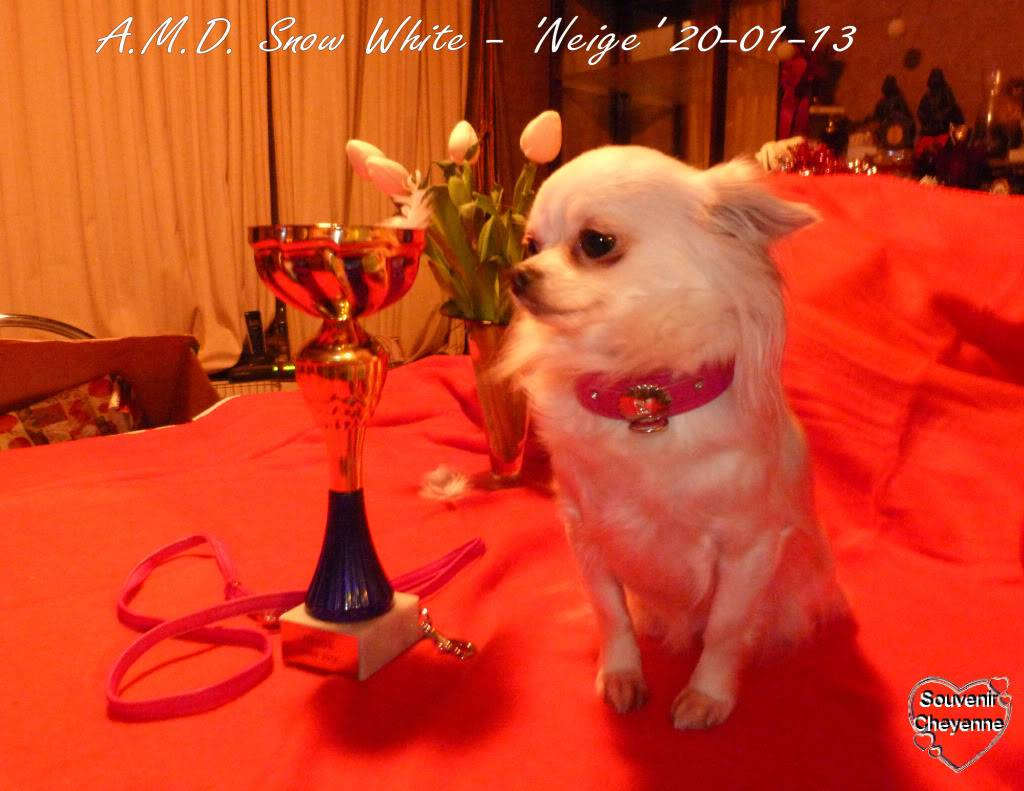 Snow White dite Neige - Page 4 20-01-13Yumma331