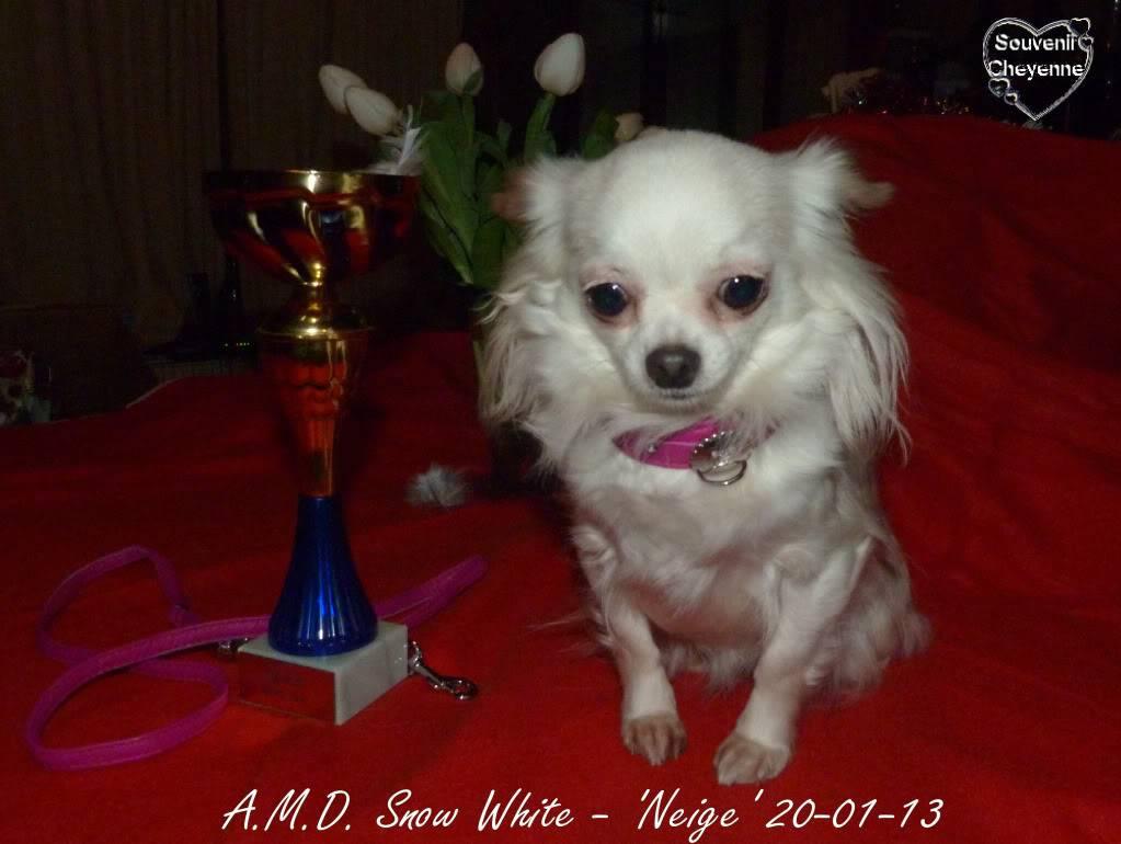 Snow White dite Neige - Page 4 20-01-13Yumma332
