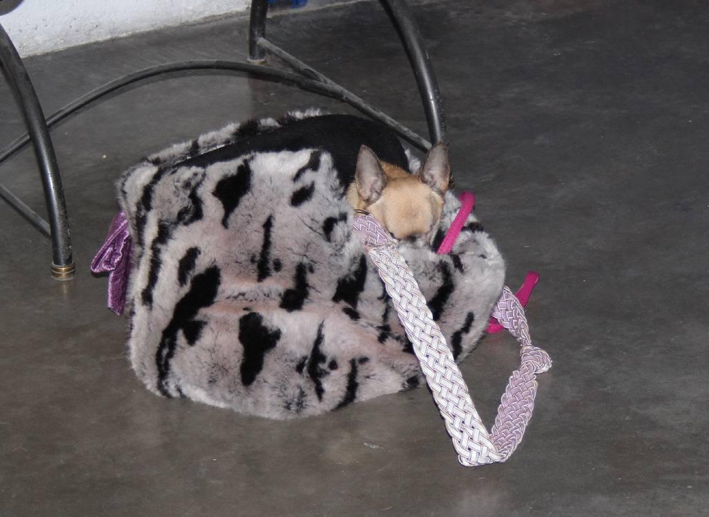Vita - J'aime La Vie Souvenir Cheyenne - Page 30 IMG_0156_zpsoij93owq