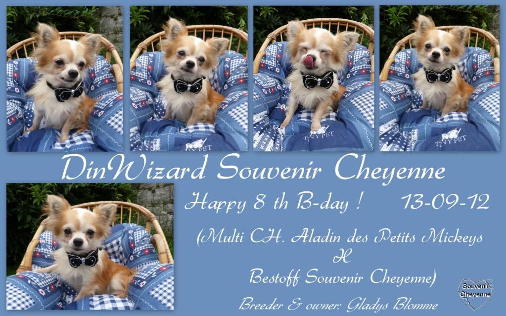 Wizard & Merlin 13-09-04 - Page 6 HappyB-dayWizyPicasa