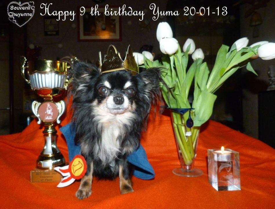 Yuma book !  - Page 4 20-01-13Yumma010