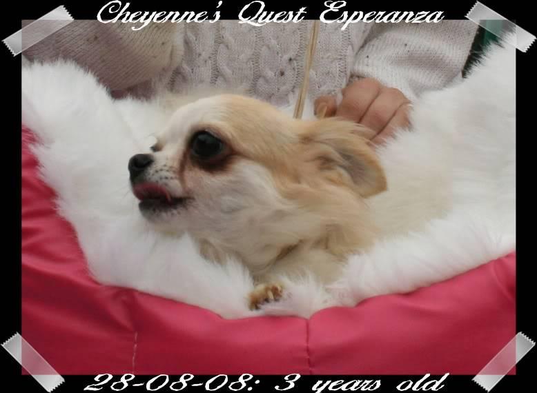 Esperanza book Anza012bb