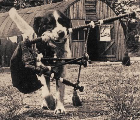 Représentations historiques du kilt CanadianScottish-pipes-drums9