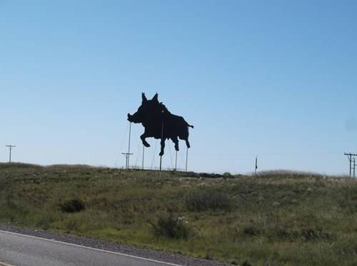 Viaje a Puerto Madryn  2014 DSCF0613_zps34067718